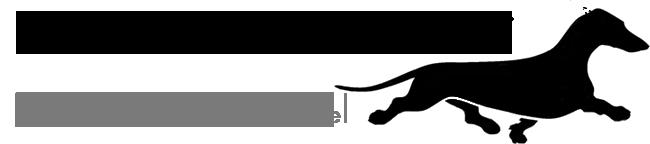 Питомник Коста Фелицитас / Kosta Felicitas/ -  стандартные гладкошерстные таксы